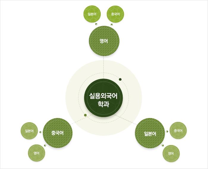 실용외국어학과 로드맵 : 하단 설명 참고
